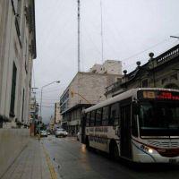 """""""Son escasos los subsidios para ómnibus urbanos y suburbanos para el interior del país"""""""