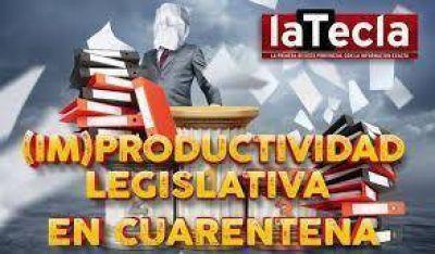 (Im)productividad legislativa en cuarentena