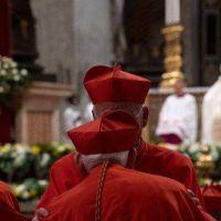 La emoción en las palabras de los futuros nuevos cardenales