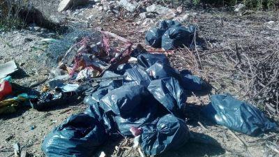 Se realizó la limpieza del área protegida en la zona de la Ex Cantera Municipal de Carlos Paz