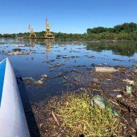 Imágenes que meten miedo en la desembocadura del arroyo El Gato: basura y contaminación
