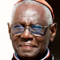 Cardenal Sarah tras ataque terrorista en Niza: Islamismo es