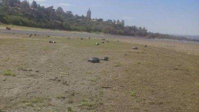 Con el lago en su punto más bajo, quitan gran cantidad de basura
