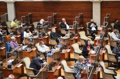 Tomaron estado parlamentario 239 proyectos