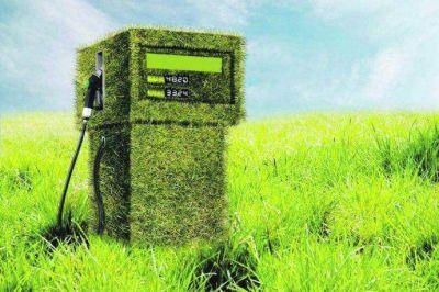 Biocombustibles, los desafíos pendientes