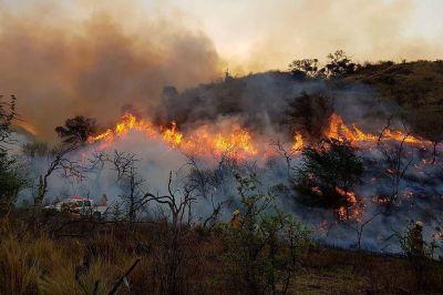 Nación homologó la emergencia agropecuaria en Córdoba por los incendios