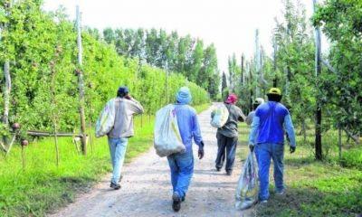 Patagonia: el protocolo de trabajadores migrantes se empantana en los municipios