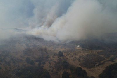 Emergencia Agropecuaria por los incendios: sumarían áreas quemadas de Río Cuarto