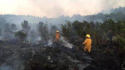 """Quemas ilegales en Misiones: """"A pesar de que rige la prohibición de usar el fuego frente a las condiciones climáticas extremas, hay irresponsables que siguen quemando"""""""