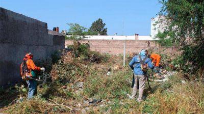 El municipio ejecutó un nuevo operativo de limpieza en un terreno privado del B° Villa Eloisa