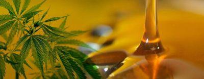 Cardozo afirmó que Córdoba adherirá a la ley de Cannabis medicinal