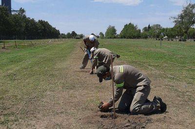 La Provincia continúa con las acciones de remediación ambiental