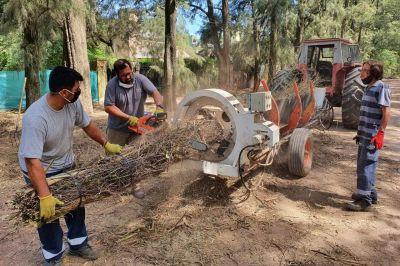 Continúa la limpieza y mantenimiento en diversos puntos de Luján