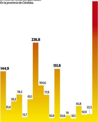 Unas 350 mil hectáreas quemadas: 2020, el peor año