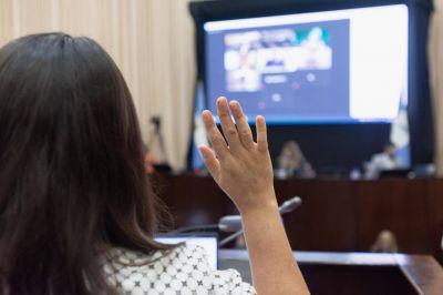 Diputados neuquinos aprobaron por ley un fondo de estabilización y desarrollo para futuras generaciones