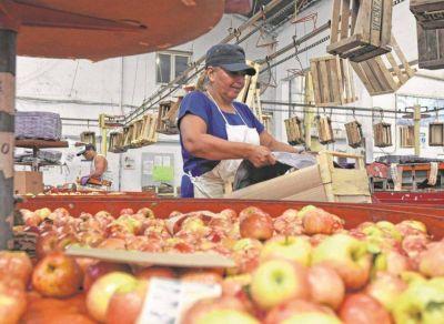 Acuerdo salarial entre CAFI y el Sindicato de la Fruta
