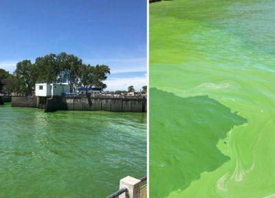 ABSA suspendió el envío de agua ante la inusual presencia de algas