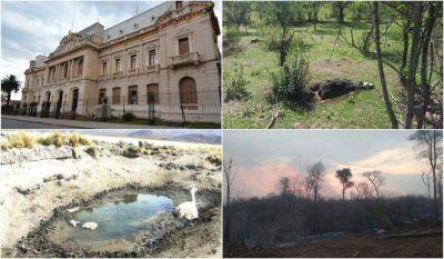 Sequía: Mientras el Estado crea más burocracia, la situación se agrava en Jujuy