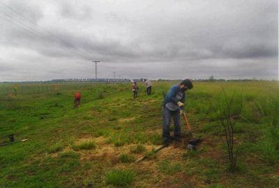 """Natalia Spinuzza: """"Plantaremos más de 50 mil árboles en la Cuenca del Morro para mitigar el desbalance hídrico de la zona"""""""