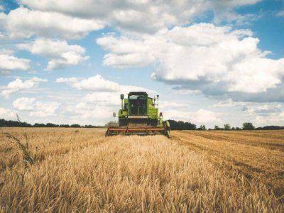 Campo: Gobierno avanza con medidas para simplificar exportaciones