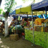 Merlo: conocé el programa 'Mercados Bonaerenses'
