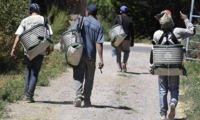 Aluvión de trabajadores migrantes pone en aprietos al gobierno de Río Negro
