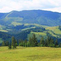 Convenio de los Cárpatos: un llamado a proteger los bosques europeos