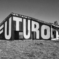Paredes que hablan y las manos detrás de 17 años de arte marplatense: Proyecto Fauna