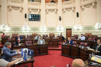"""Diputados se reunieron con el directorio de Vicentin para saber """"dónde está el dinero"""""""