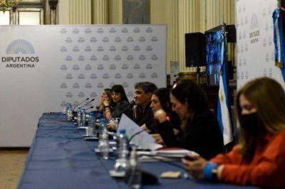 Diputados continuó con la cuarta jornada de debate por la legalización del aborto