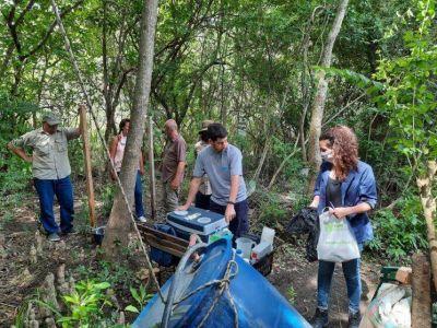 Cianobacterias en el Delta de Tigre: continúan los estudios para investigar el estado de las aguas del río