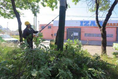 Continúan los operativos de mejoramiento del alumbrado público
