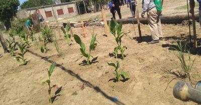 Clausuran basurales y crean nuevos espacios verdes en Lomas