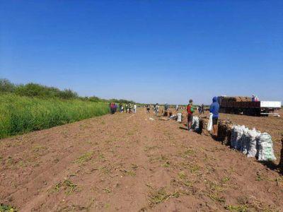 Detectaron a 32 trabajadores rurales en condiciones de semi esclavitud en San Luis