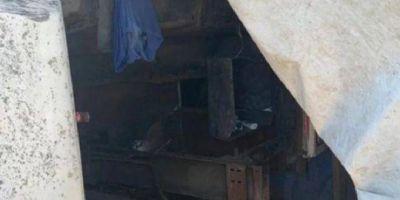 Rescataron a 30 trabajadores esclavos, entre ellos mujeres, en cuatro campos bonaerenses