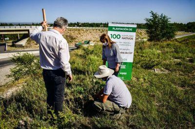Empresa de gaseosas donó 100 árboles a San Antonio de Arredondo
