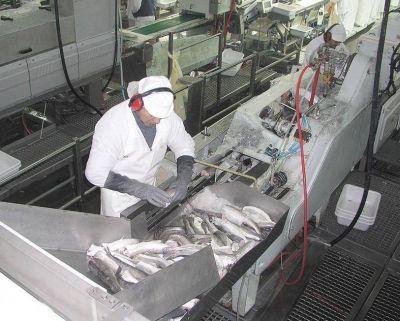 El STIA criticó a Aguilar y su proyecto de ley de Pesca