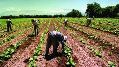 El sindicato de los trabajadores rurales reclamó un bono de fin de año de $15.000