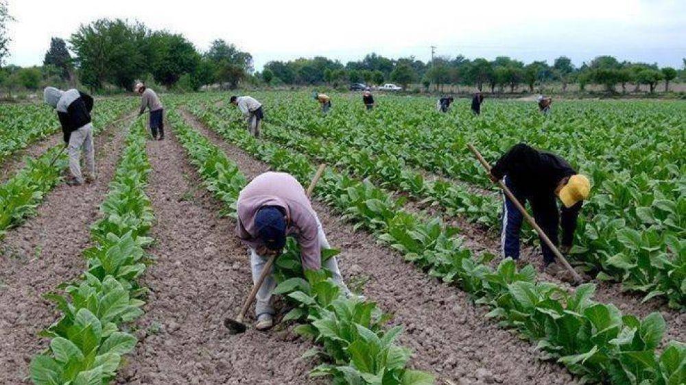 La UATRE acordó una nueva escala salarial para los trabajadores tabacaleros