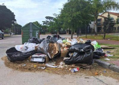 """Residuos en Montevideo: """"Se está levantando la basura, pero aún falta"""", dice Adeom"""