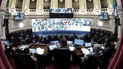 El Senado cierra el año con el tratamiento de la Ley de Interrupción Legal del Embarazo