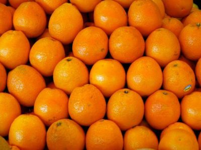 Naranja : la exportación de jugo es la más alta en 11 años