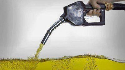Biocombustibles: habrá aumentos escalonados hasta llegar a 90% en mayo