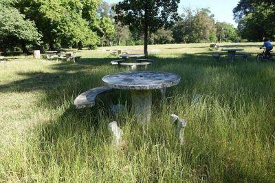 Parque Pereyra: advierten que podría dejar de ser reserva de biosfera