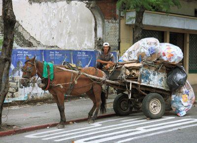 La Comuna confirmó que se avanzará en forma progresiva con la prohibición de la Tracción a sangre animal en Quilmes