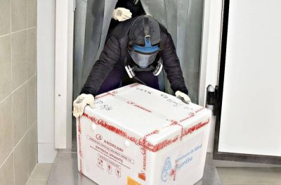 Llegan a La Pampa otras 900 dosis de la vacuna Sputnik