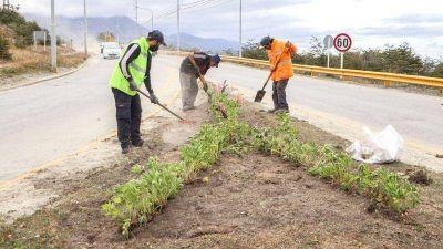 Tareas de mantenimiento en Héroes de Malvinas