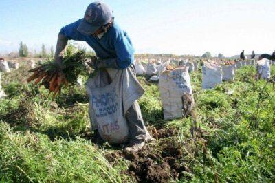 Denuncian que la mayoría de trabajadores rurales quedó excluida del bono acordado por la UATRE