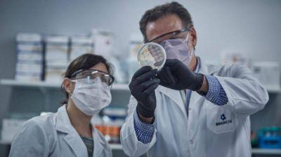 Suero equino: El medicamento que reduce a la mitad la mortalidad por COVID fue desarrollado en San Martín