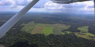 Colombia ampliará programa contra deforestación con apoyo de Noruega